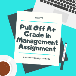 Pull off A+ Grade in Management Assignment